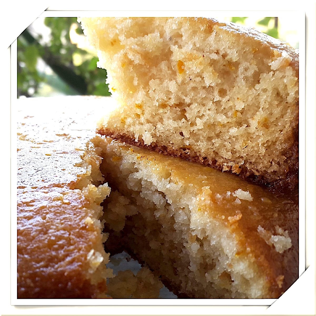 Coconut Orange Tea Cake With Citrus Glaze